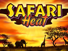 Онлайн автомат Safari Heat